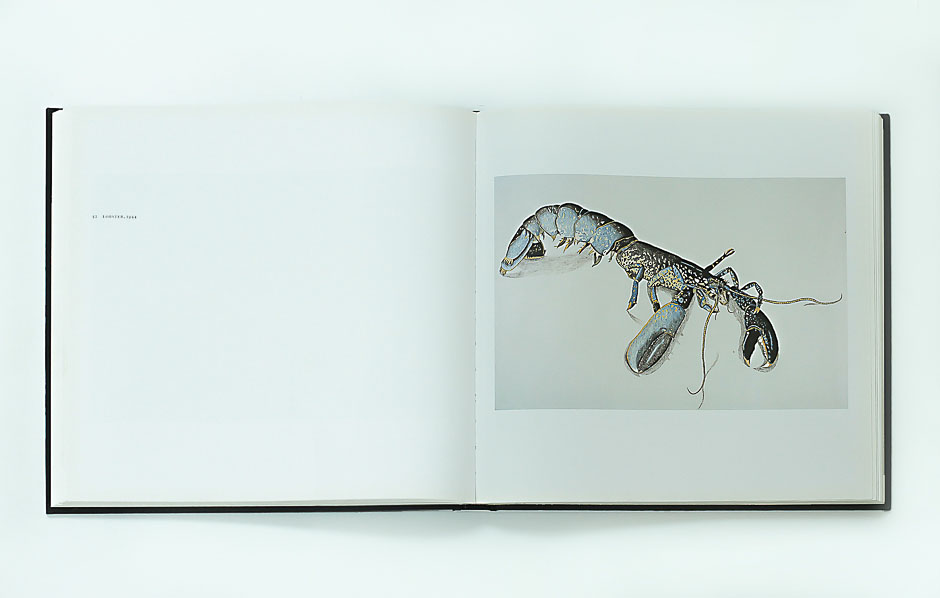 lucian freud on paper 4 _lobster