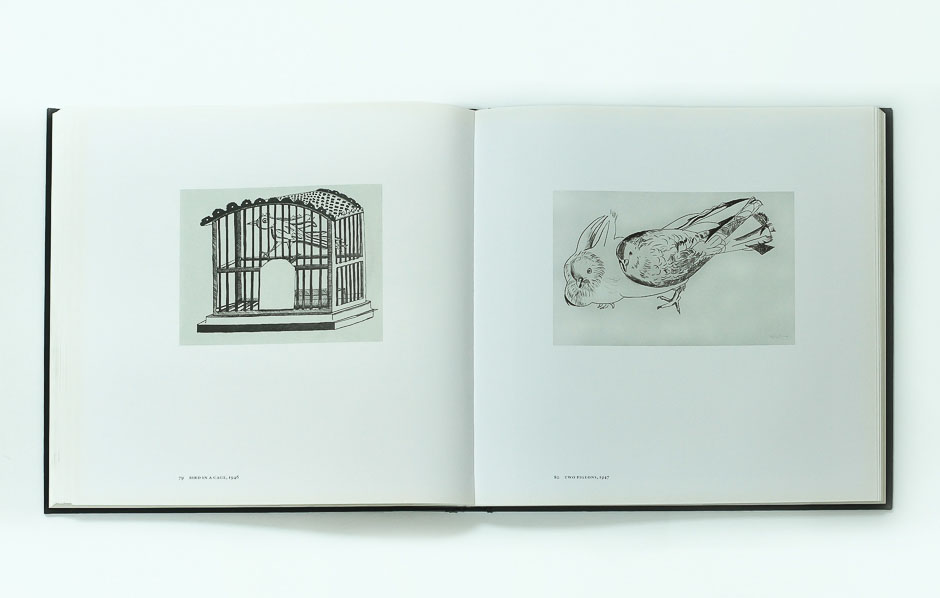 lucian freud on paper 6 _bird-cage