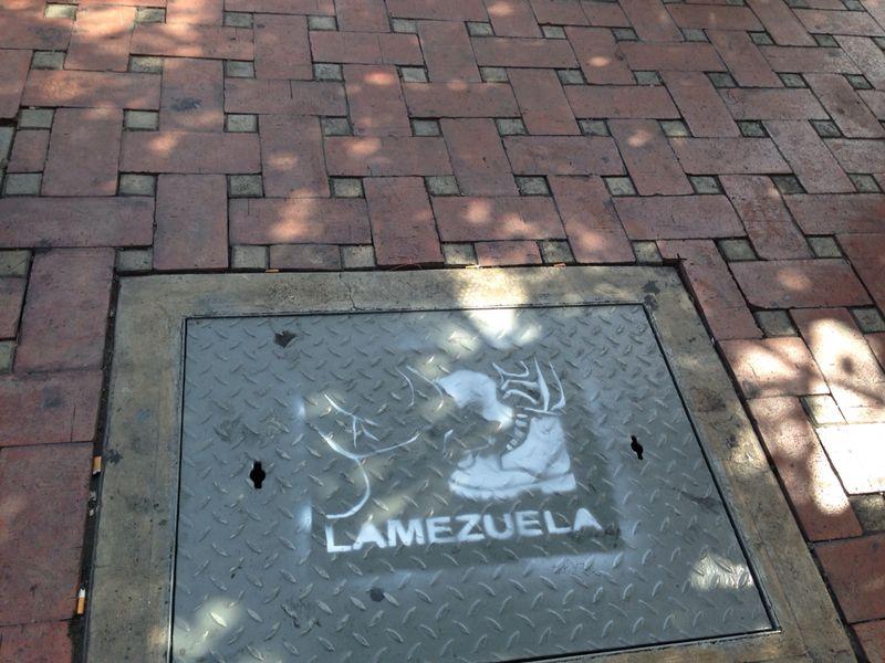 Lamezuela 6