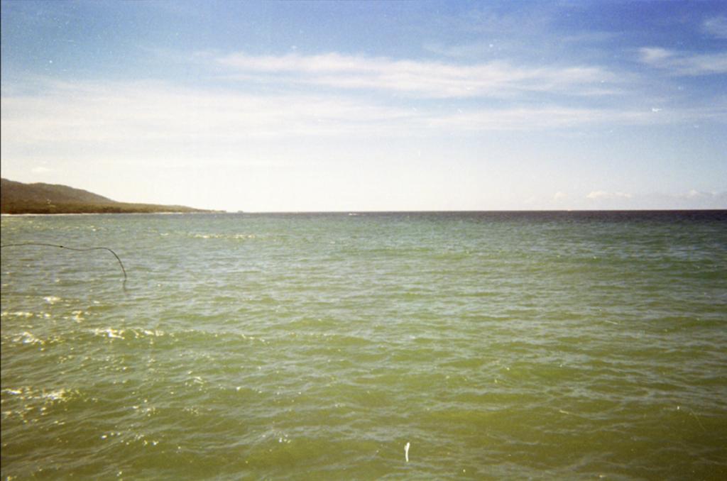 Wilmes y el mar por Diana Rangel 00