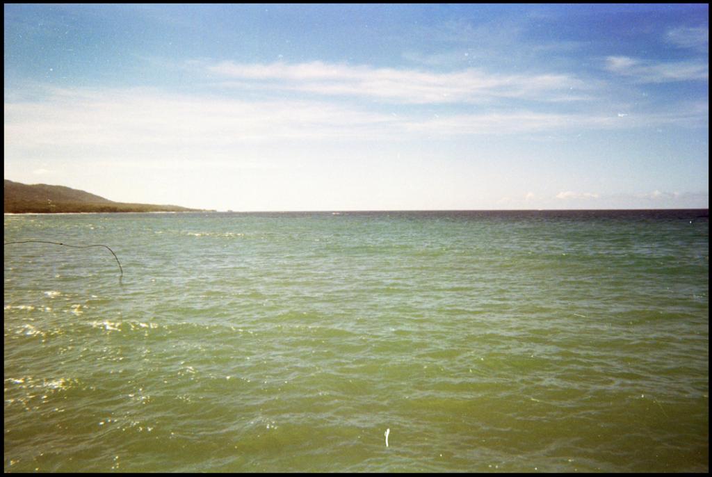 Wilmes y el mar por Diana Rangel 3