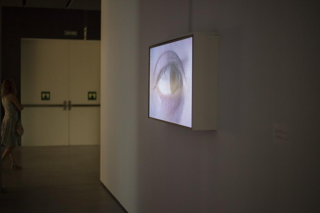Rafael Lozano-Hemmer Abstracción biométrica 8