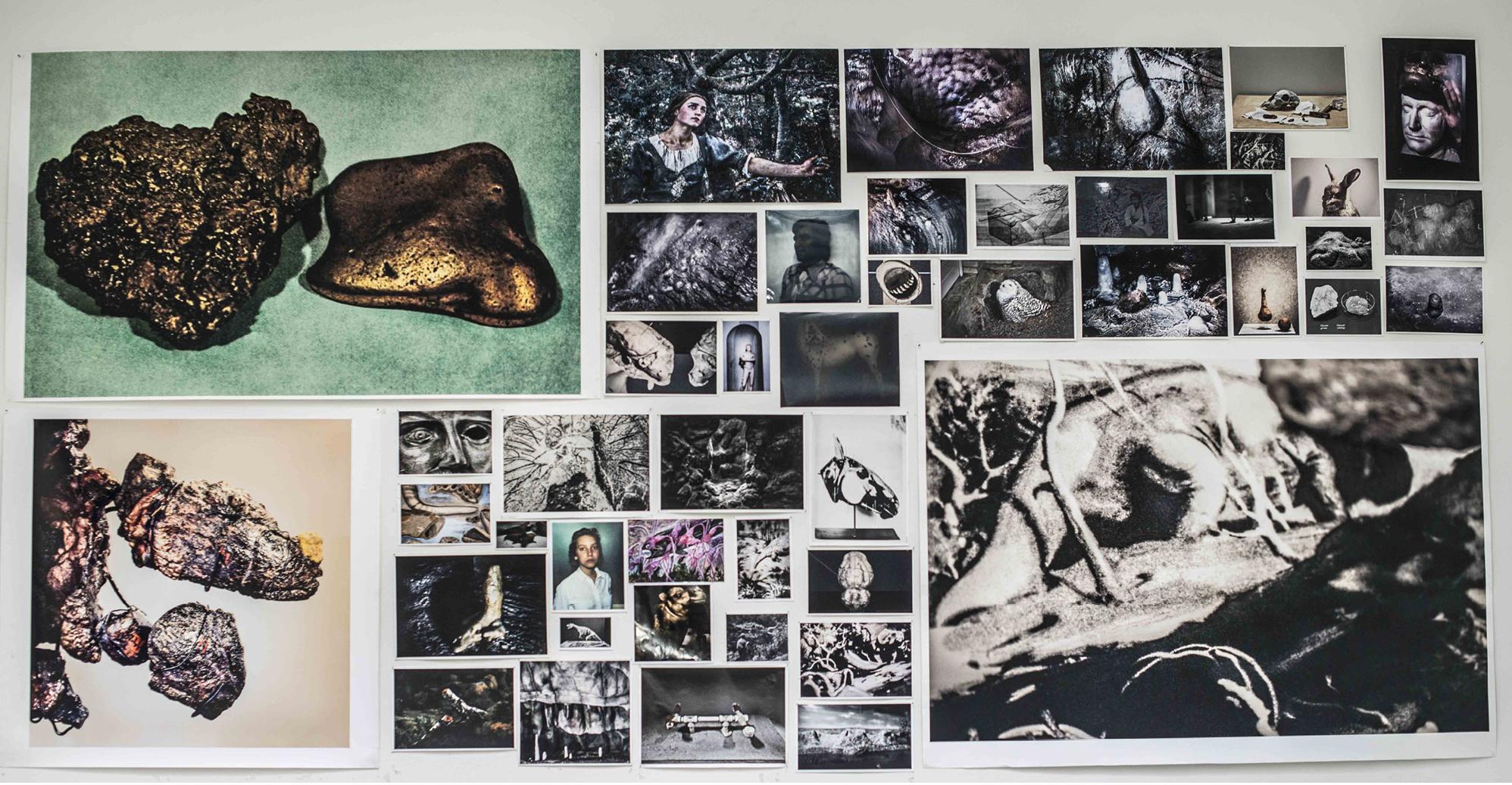 Exhibición individual y firma del libro The Swamp en Kandlhofer Gallery, Viena 2016