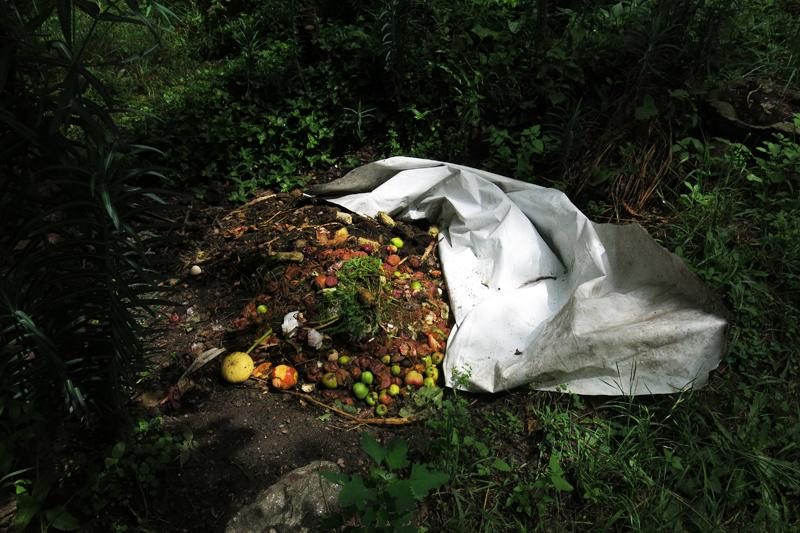 Una escultura en el compost orgánico. Córdoba, Argentina. 2016.