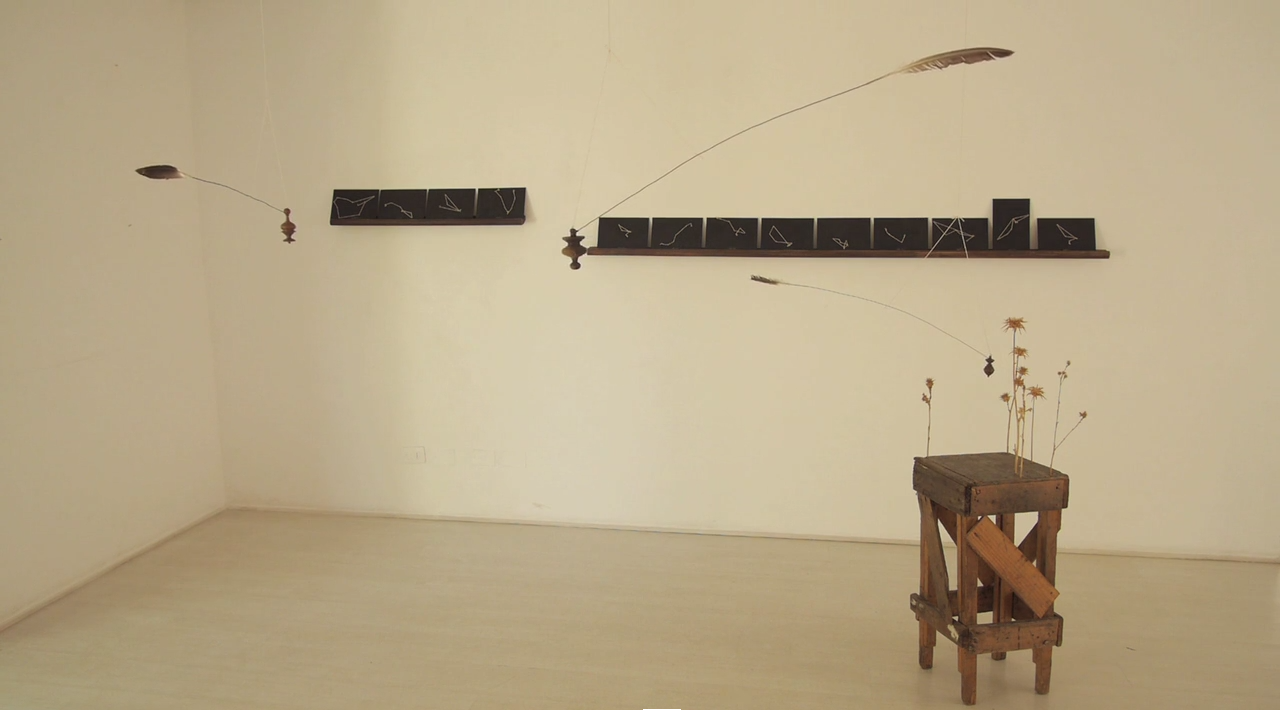 ECLIPSE DE TROMPO Y FLOR IMPULSADO POR LA FUERZA DE UNA PLUMA | Piso de madera, flores muertas, alambre, cordel, trompos y plumas móviles. Dimensiones variables. Art Lima, Perú, 2015.