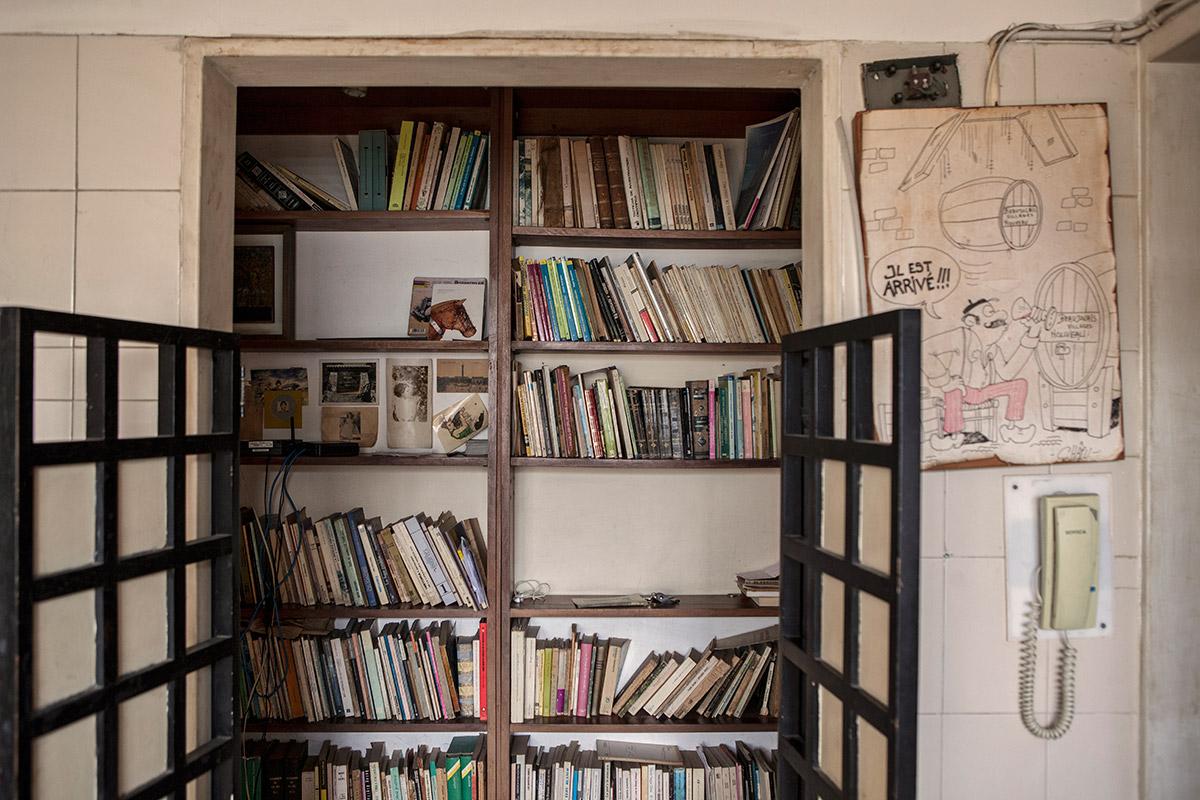 Biblioteca-Adriano-Gonzalez-Leon-03