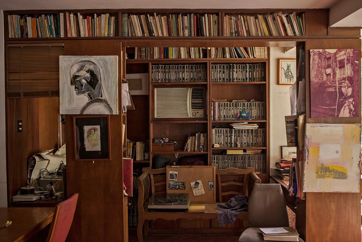 Biblioteca-Adriano-Gonzalez-Leon-08