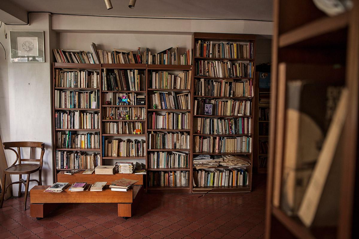 Biblioteca-Adriano-Gonzalez-Leon-09