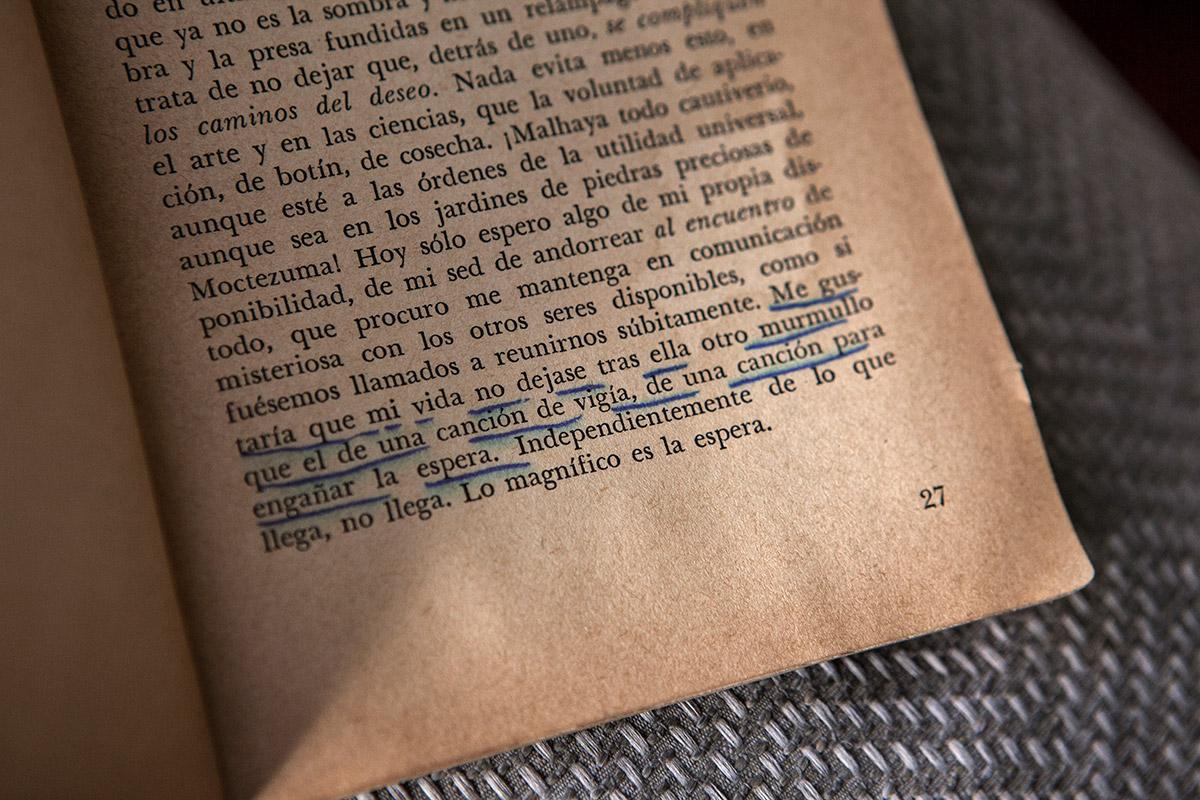 Biblioteca-Adriano-Gonzalez-Leon-17